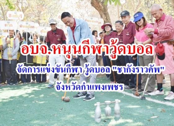 การแข่งขันกีฬา วู้ดบอล