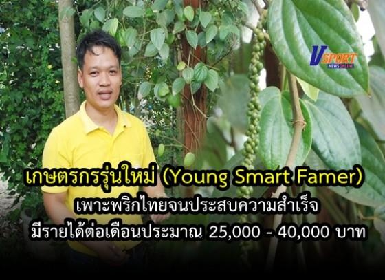 เกษตรกรรุ่นใหม่(Young Smart Famer)เพาะพริกไทย จนประสบความสำเร็จ มีรายได้ต่อเดือนประมาณ 25,000 - 40,000 บาท